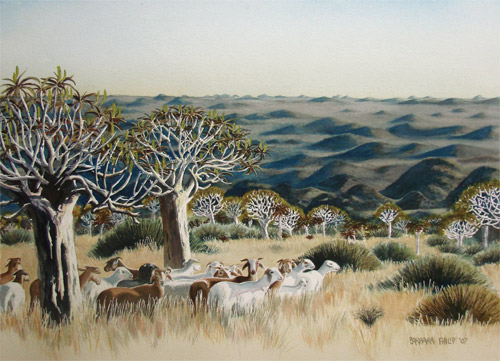 Kokerbooms & sheep painting