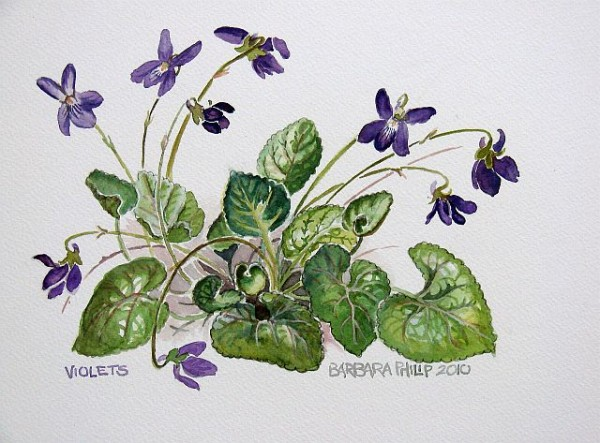 Painting of Violets