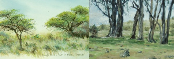 Day 6. Excelsior braai,  two different tree studies.