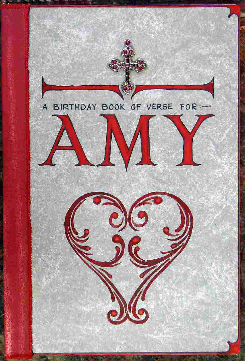Amy's Book, cover
