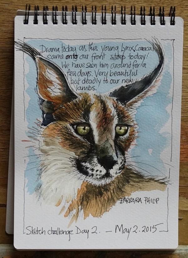 Lynx or Caracal