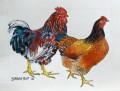 Farm Fowls