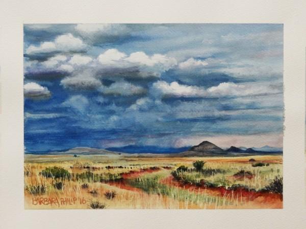 Karoo & rain clouds