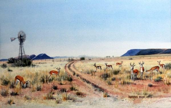 Springbuck in karoo landscape