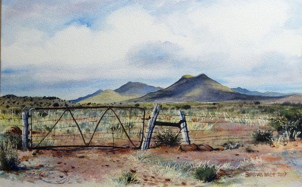 Farm Gate, karoo landscape.