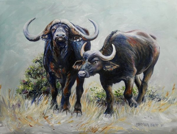 Buffalo Pair in Oils
