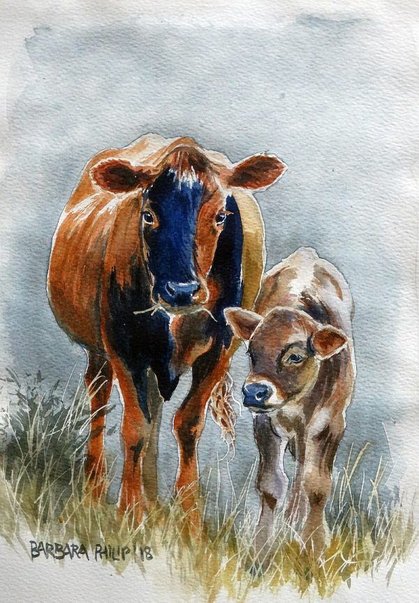 Pretty mama cow and calf