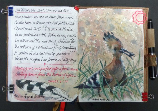 Hoopoe in my journal