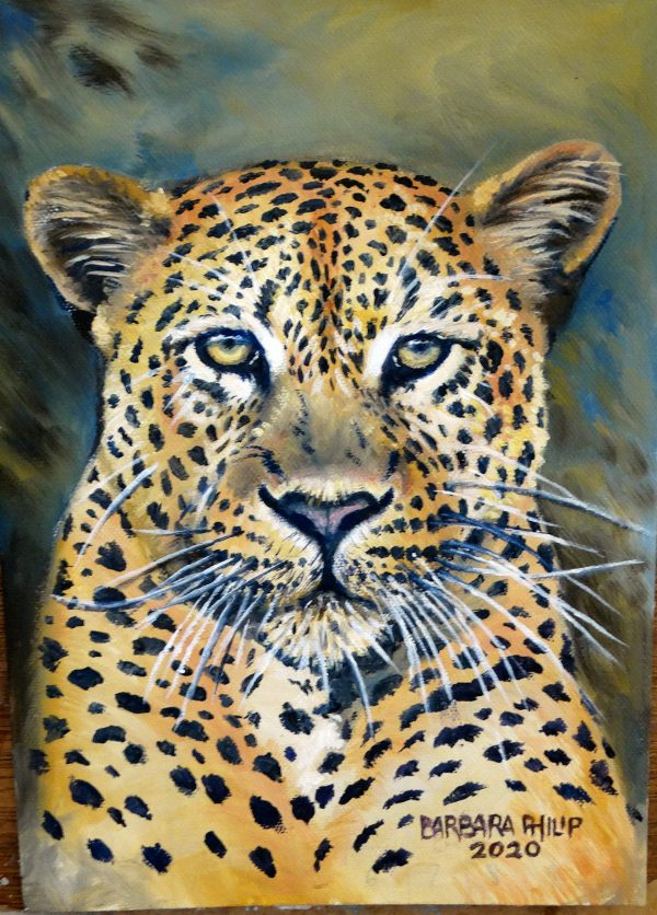 Big Cats, portrait