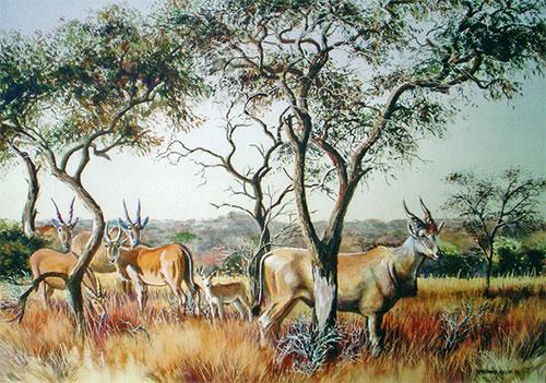 Eland painting