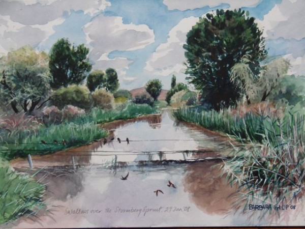 River with swallows painting. Stormberg Spruit