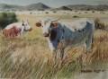 Nguni painting