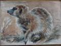 meercat painting 3