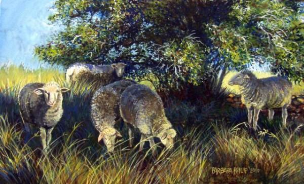 Sheep grazing painting