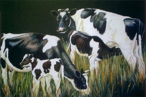 Friesland Cows & calves painting