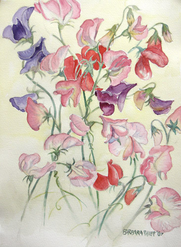 painting of Sweet Peas