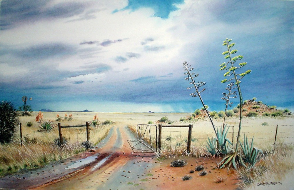Karoo Landscape With Gate 187 Barbara Philip African Painting