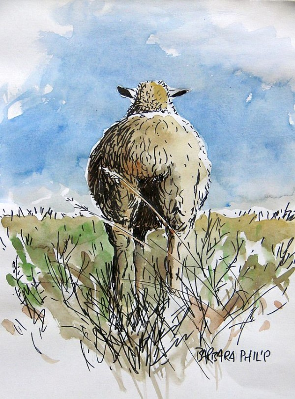 """sheep sketch, """"I know you're there"""""""