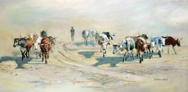 Nguni Herd & Herdsman.
