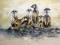 Meercats on the Ash-heap.