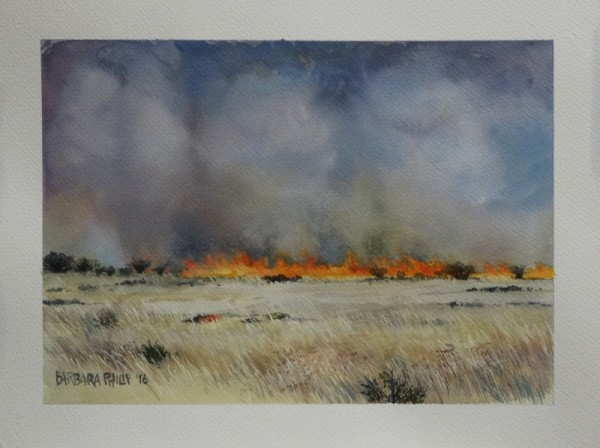 Fire on the farms