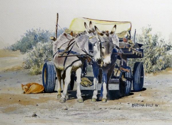 Donkey Cart and salt bush.