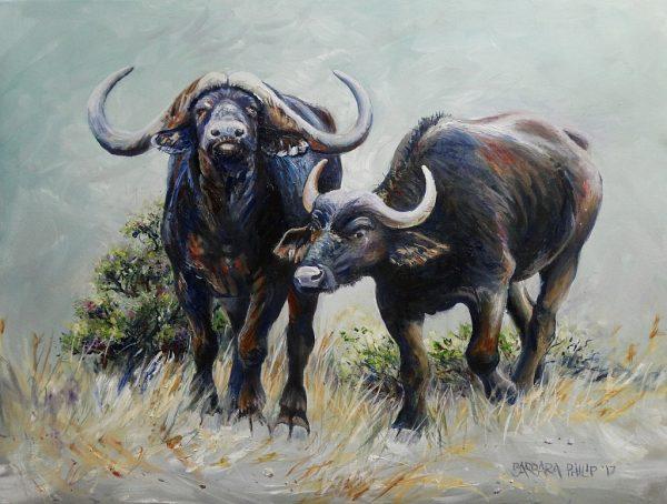 Buffalo Pair in Oils