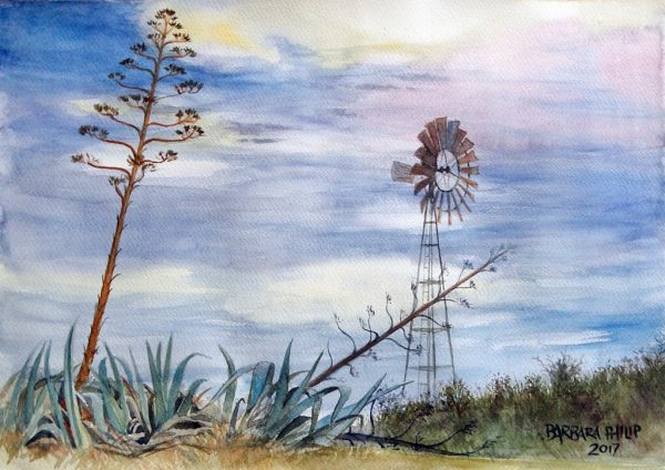 Windmill and agaves, Silvermere