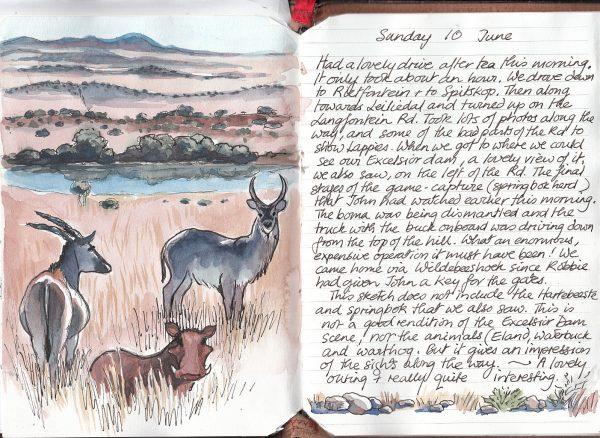 Sketch book page 3