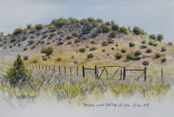 Karoo farm hill